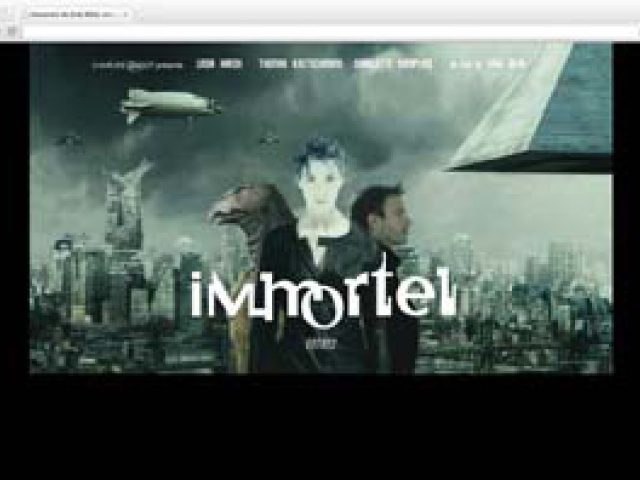 Interactive Media Developer Integrator